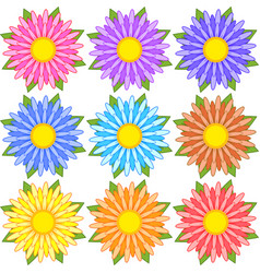 Set of blue red yellow white pink flowers vector