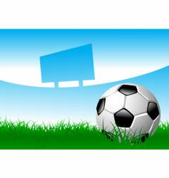 soccer ball on grass field vector image