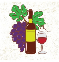 Vine and grapes colored vector