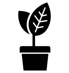 Young plant in pot vector image