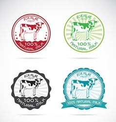 Set of an dairy cows label vector image vector image