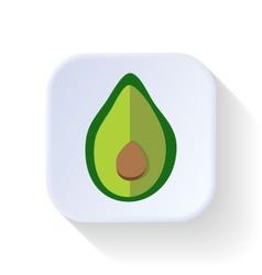 Avocado fruit vector