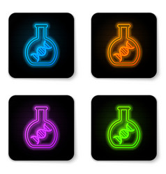 glowing neon dna research search icon isolated on vector image