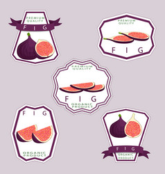 Icon logo for whole ripe fruit vector
