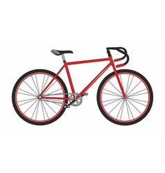 Red sport bicycle on a white background vector