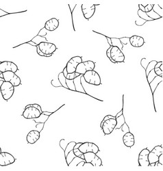 seamless pattern with black and white lunaria vector image