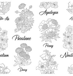 seamless pattern with purslane peony aquilegia vector image