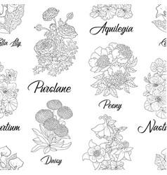 seamless pattern with purslane peony aquilegia vector image
