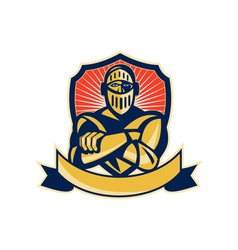 knight arms crossed with shield vector image