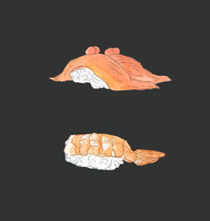 set of sushi japanese food sketch vector image