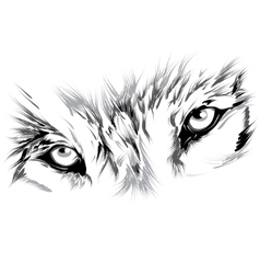Wolf face vector image vector image