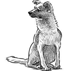 A hand drawing a sitting dog vector