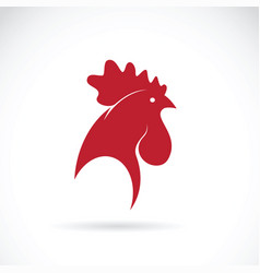 cock head design on white background farm vector image