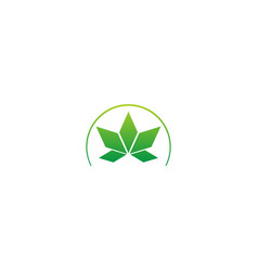 green leaf abstract sign logo vector image