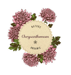 round paper emblem over asters hand drawn vector image