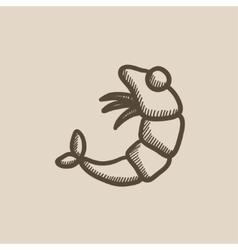 Shrimp sketch icon vector
