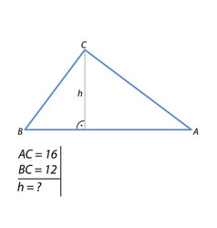 The task of finding the right triangle height-01 vector