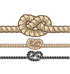 rope knot vector image