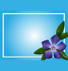 Border template with blue periwinkle flower vector