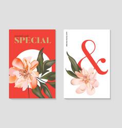 set floral elements wedding card design vector image