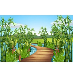 Nature scene with bamboos along the bridge vector