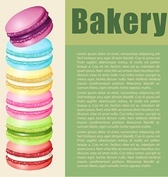 Infographic with text and macaron vector image vector image