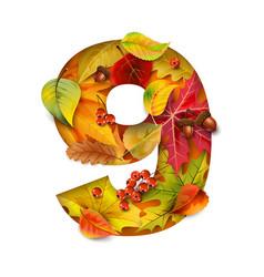 autumn stylized alphabet with foliage digit9 vector image