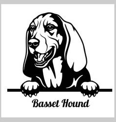 basset hound - peeking dogs - breed face head vector image