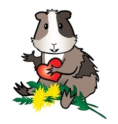Hamster Guinea pig with dandelion vector