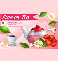 herbal tea glass pot hibiscus chamomile and mint vector image