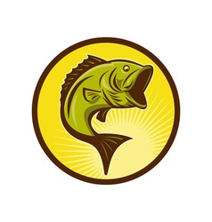 Largemouth bass fish jumping vector