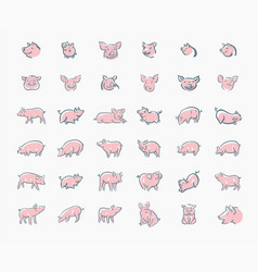 pig sketch icon set for web mobile and vector image