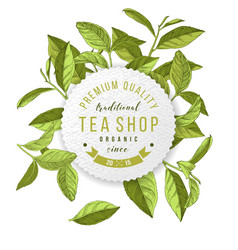 tea shop emblem with hand drawn tea leaves vector image