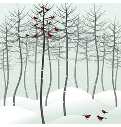 Birds sitting on tree vector image vector image