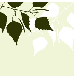 Fresh background of green birch leaves vector image