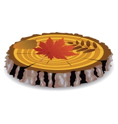 wooden cut and fall leaves vector image vector image
