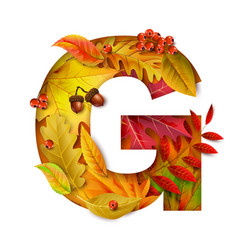 Autumn stylized alphabet with foliage letter g vector