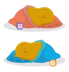 cartoon sleeping fat cat vector image