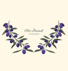 Olive branch wreath isolated vector