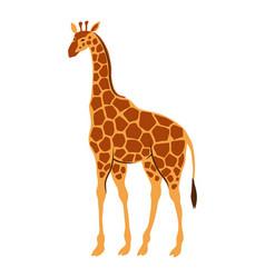 Stylized of giraffe vector