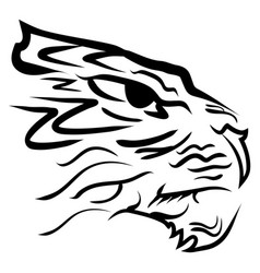 stylized image tiger head vector image