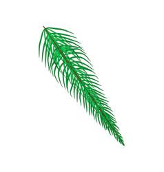 christmas fir branch cartoon design for card icon vector image