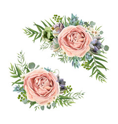 Floral bouquet design of garden pink lavender rose vector
