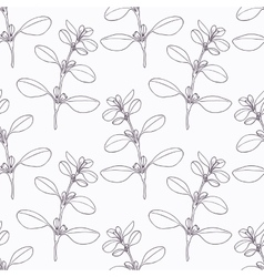 Hand drawn marjoram branch outline seamless vector image