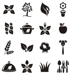 Organic cooking icons vector image