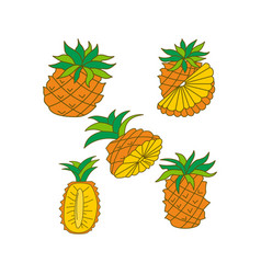pineapple fruit template flat vector image