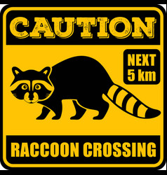 road sign - attention animal raccoon crossing vector image