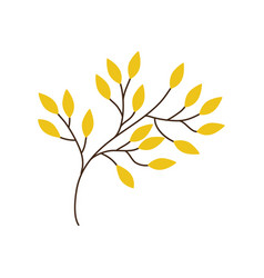 branch yellow leaves image vector image