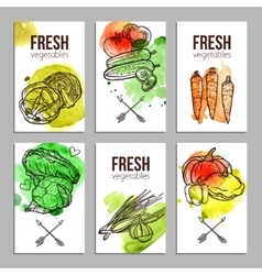 Cards With Vegetables vector image
