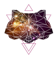 Abstract polygonal tirangle animal raccoon vector